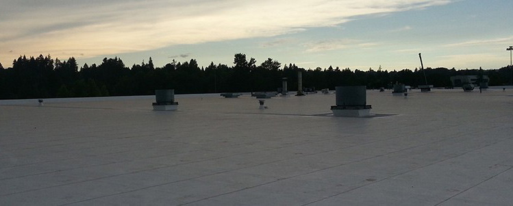 A commercial flat roofing project completed by Slate & Slate Roofing
