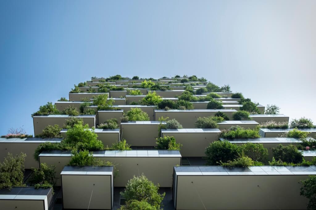 Green roofing installed in urban area